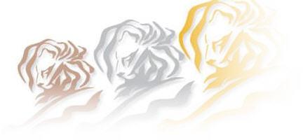 קאן הזהב, קאן, אריה, תחרות פרסום, קריאייטיב, זהב, 2007
