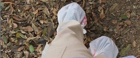 דורי בן ישראל, שקיות ניילון, נעליים