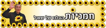 שאול פרחיו ובניו, חמניות, הבלוג של שאול, דובלה גליקמן