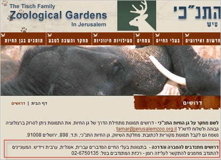 סוסים שמדברים עברית
