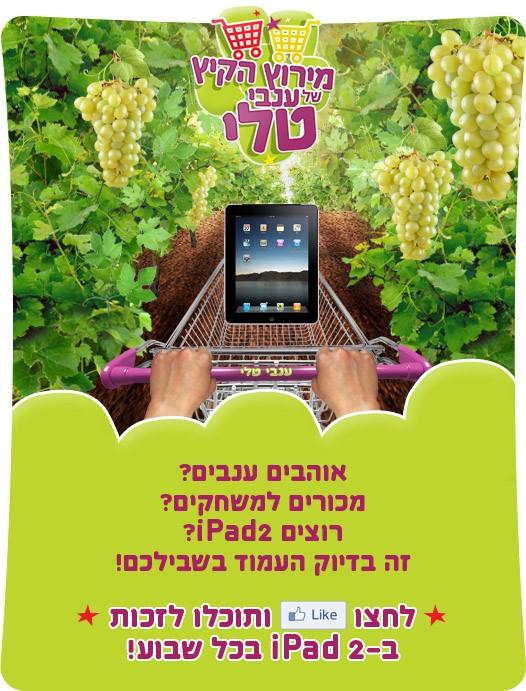 מירוץ הקיץ של ענבי טלי