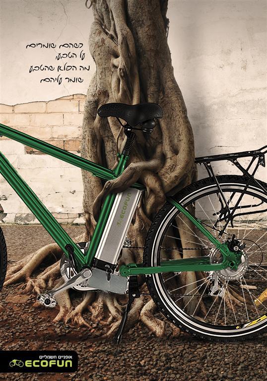 מקום ראשון תערוכה ירוקה – גלעד קומר