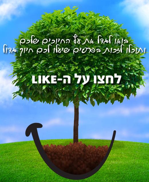 עץ החיוכים של פריגת