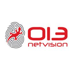 013-Netvision