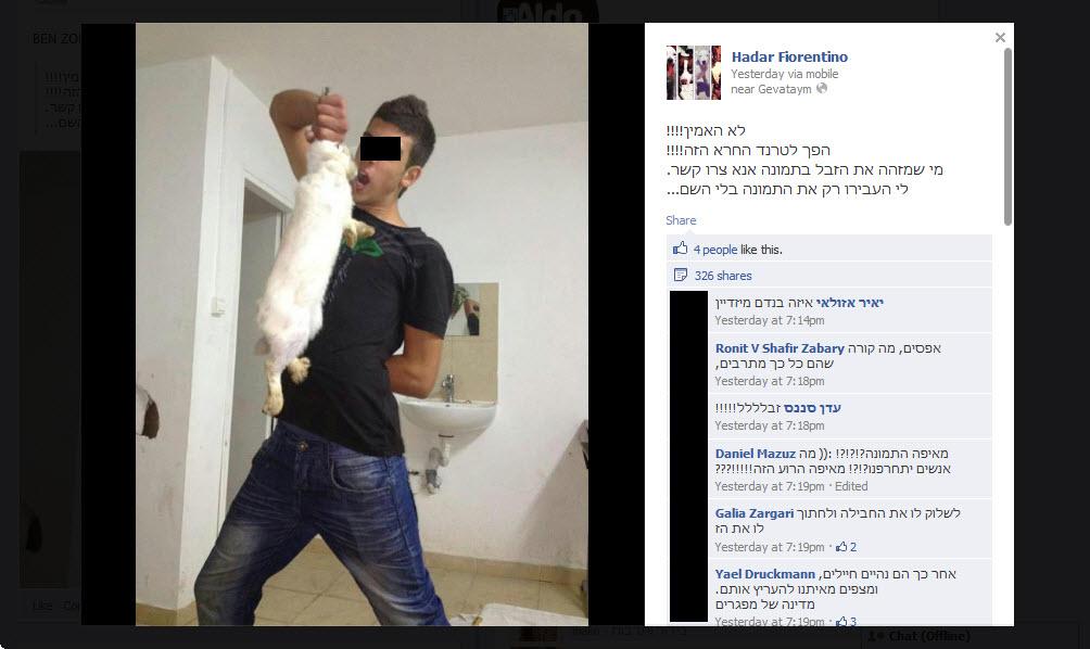הפך לטרנד: מתעללים בחתול ומעלים את התמונה לפייסבוק