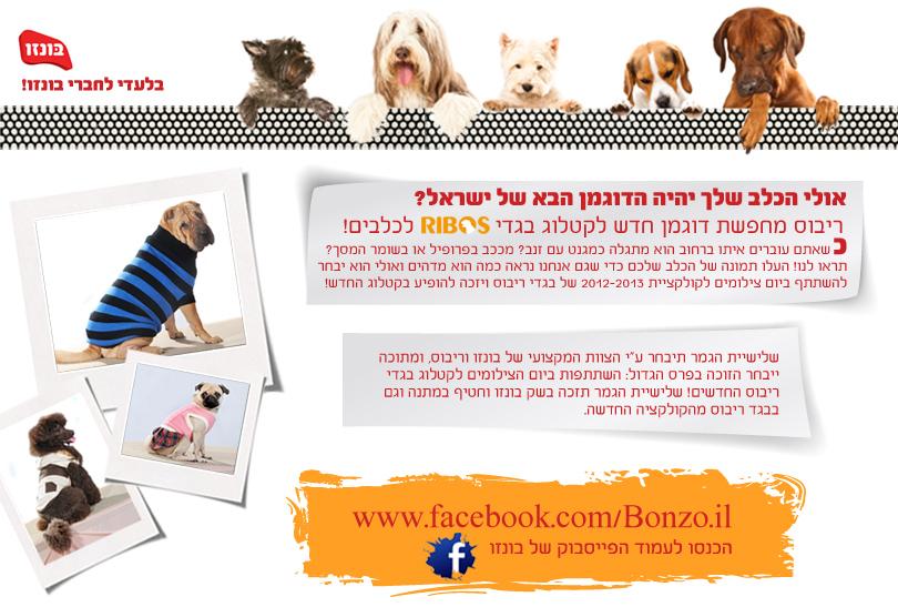 פייסבוק: אולי הכלב שלך יהיה הדוגמן הבא של ישראל?