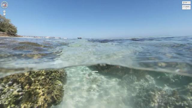 oceangoogle