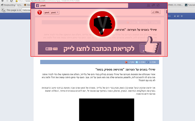 YNET Anti-Like - תוסף כרום אנטי לייק בעמוד הפייסבוק של וויינט