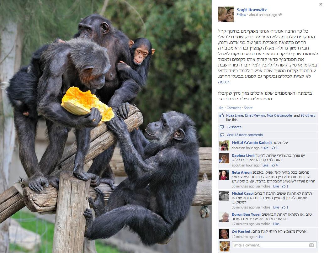 סטטוס הפייסבוק של שגית הורוביץ