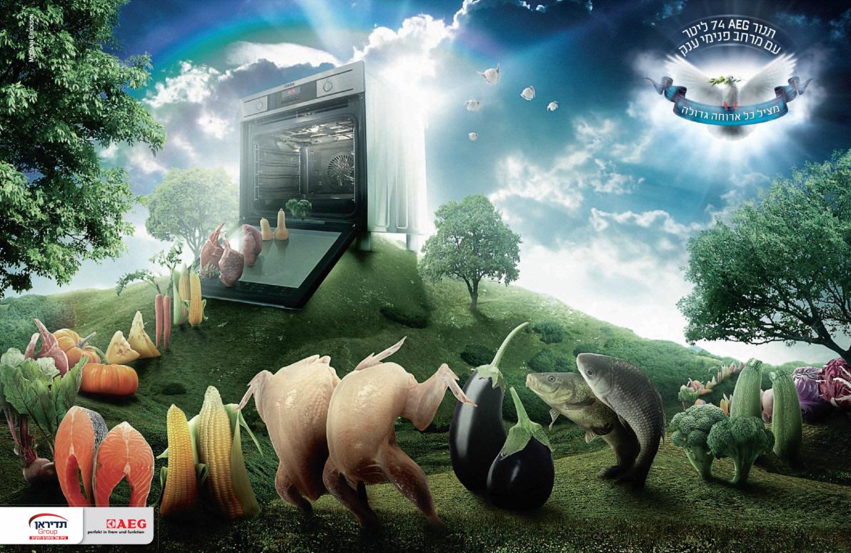 מדד המותגים 2013: תנור AEG - מציל כל ארוחה גדולה