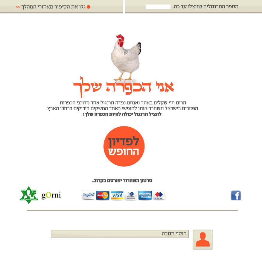 יוזמה מעניינת לקראת יום כיפור: להציל תרנגול יכולה להיות הכפרה שלך