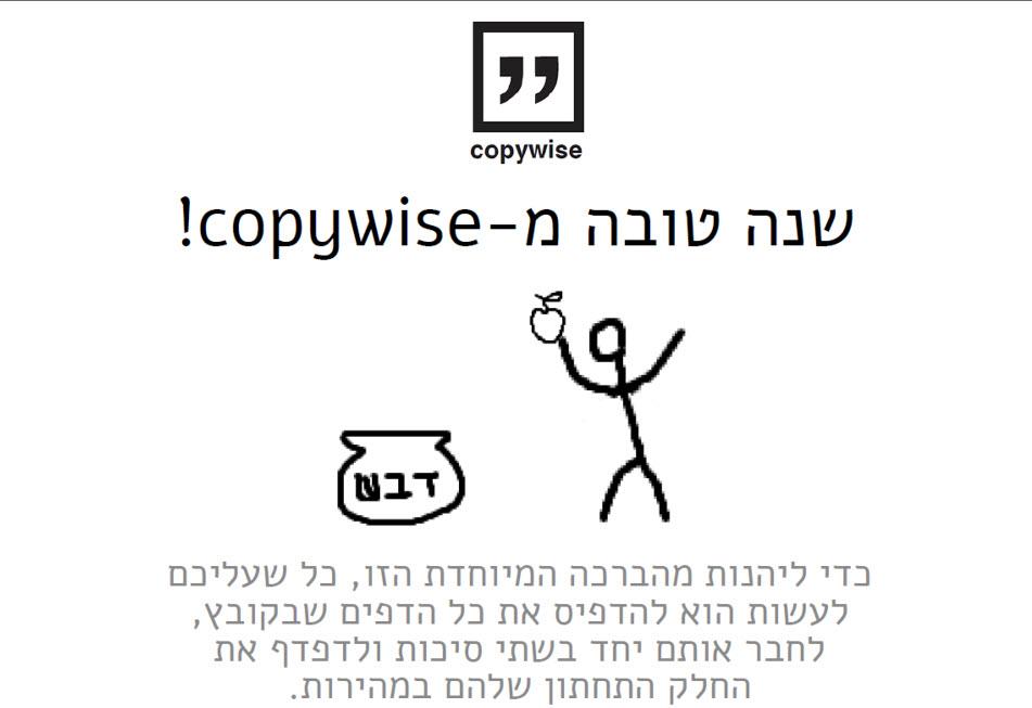 copywiseda
