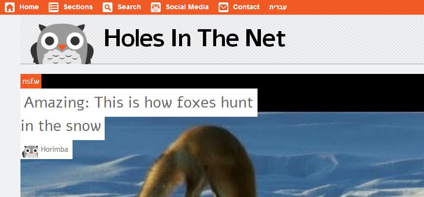 תתחילו לשנן: הולס אין דה נט - חורים ברשת ישיק גירסא באנגלית