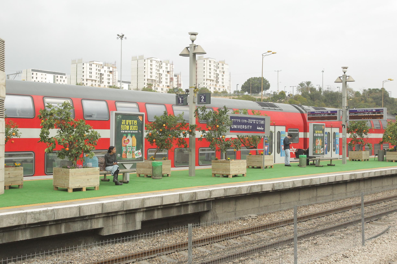 הפרדס של פריגת ברכבת ישראל - צילום: שוקה כהן