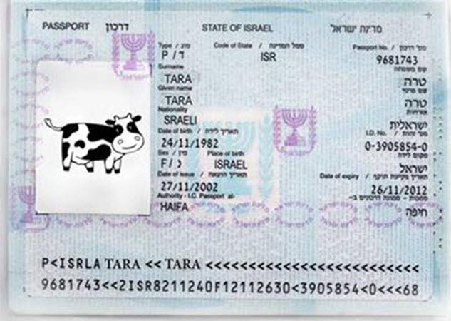 Copy-of-tara1
