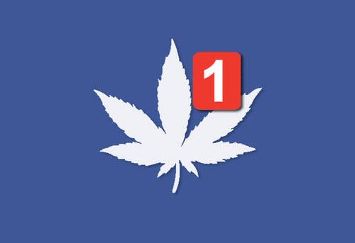 אין כיוון: פייסבוק סגרה את העמוד של מגזין קנאביס הישראלי