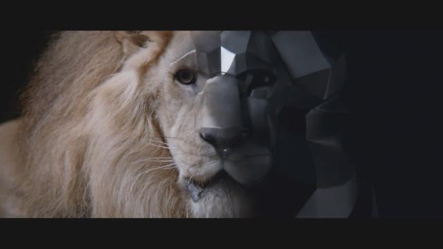 lionbyl