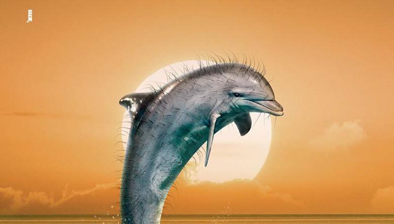 דג הזהב - מנצ'